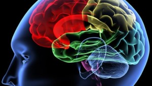 Potential Treatment For Parkinson's, Alzheimer's And Dementia