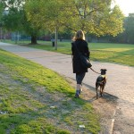 Routine: You take your dog for a walk.