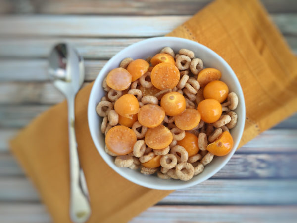Protein Packed Pichuberry Cereal Bowl