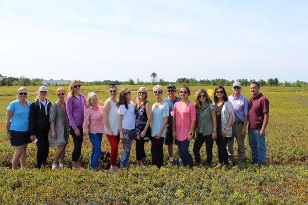 Wild Blueberry Harvest Tour