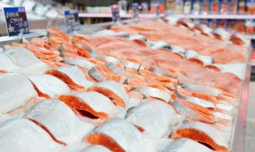 Salmon at the grocery store