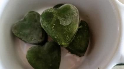 Frozen kale cubes