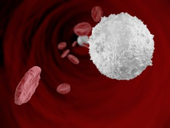 Cholesterol in the bloodstream, concept