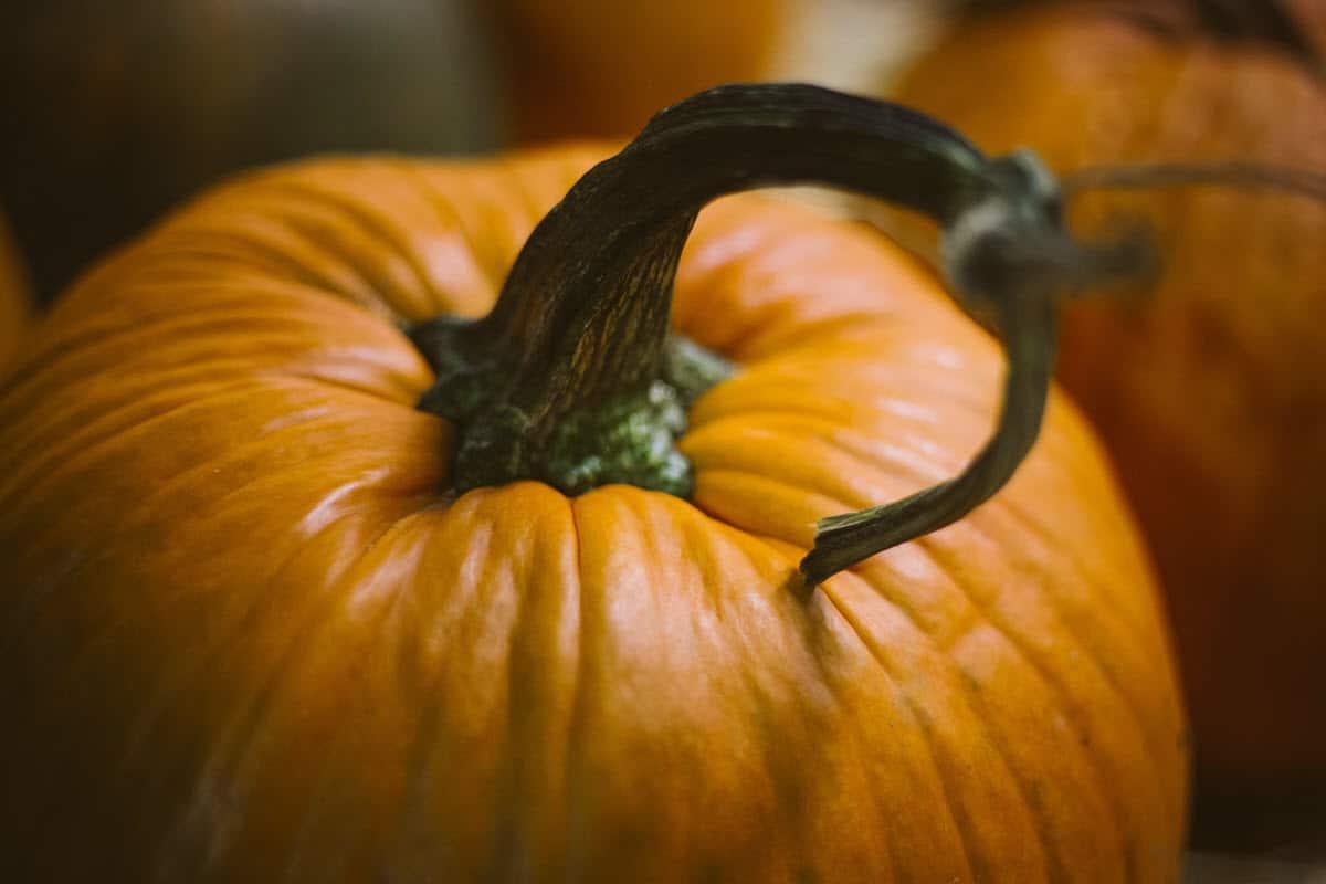 Low Carb Pumpkin Recipes