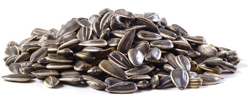 In Shell Raw Sunflower Seeds Nutscom