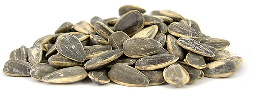 Salted In Shell Roasted Sunflower Seeds Nutscom