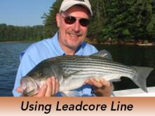 Pro-Tip-Leadcore-Line