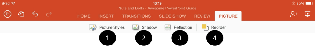 PowerPoint for iPad Pictures Tab Icons