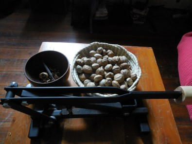 hickory nuts and the indispensible Mr. Hickory nut cracker