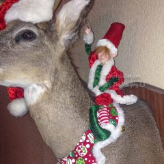 Ride Em' Elf | Rocky The Naughty Elf On A Shelf