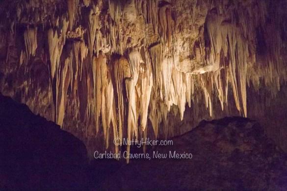 Carlsbad-Caverns-New-Mexico-10