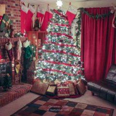 The perfect Christmas 2010