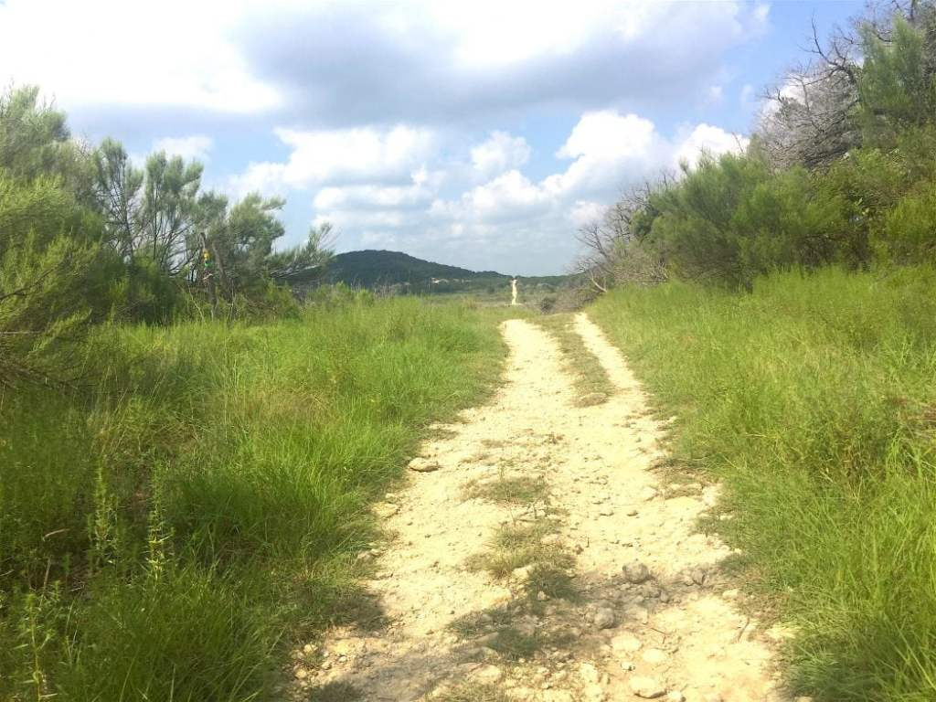 Dammit Hill at Dana Peak Park in Harker Heights Texas picture