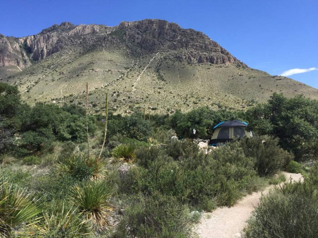 Guadalupe Mountain National Park Piney Woods Campground