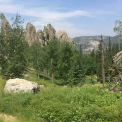 Hiking the Sunday Gulch Trail in Custer State Park, Black Hills, South Dakota