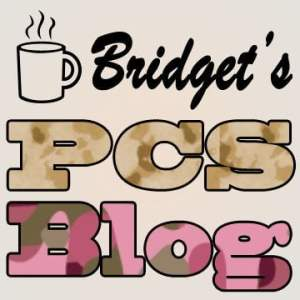 Bridgets PCS Blog