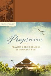 Prayer Points Book Review
