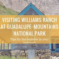 Williams Ranch | Guadalupe Mountains Nat'l Park