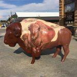 Big Painted Buffalos in Custer, South Dakota
