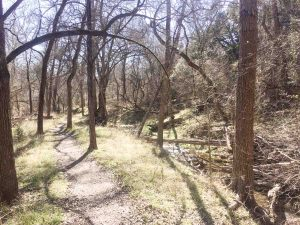 Mother Neff State Park near Fort Hood