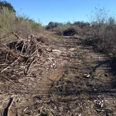 Sidewinder Trail is No More at Dana Peak Park