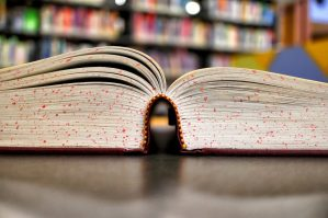 School, Study, College, Textbook