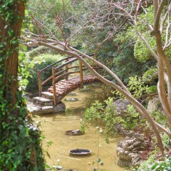 Zilker Botanical Garden in Austin, Texas
