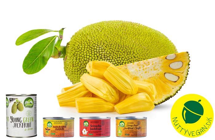 hvad er jackfruit