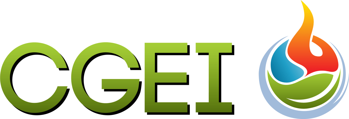 cgei partenaire distribution