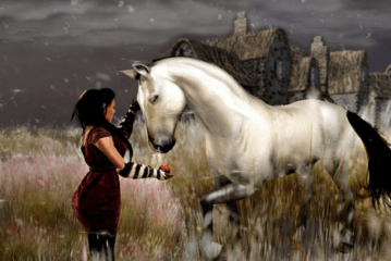 Pip's Flickr Pic's – Cinnamon Before the Storm – Zander Reeves – Second Life