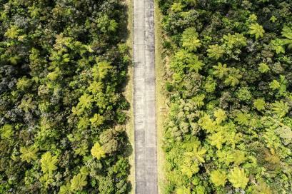 Strasse Drohnenshot Wald La Reunion