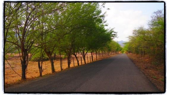 Honda Cambao arasi toprak yol