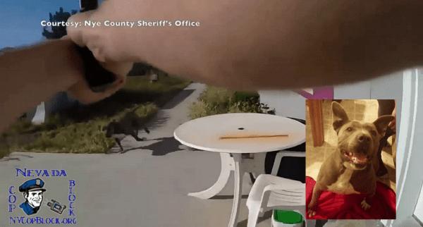 Nye County Nevada Pahrump Dog Shooting