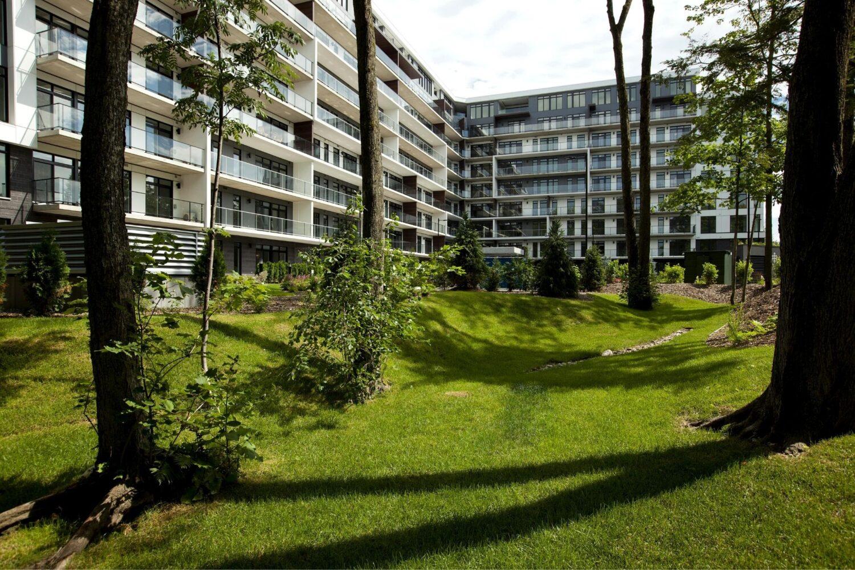 nvira-realisation-architecture-de-paysage-altitude