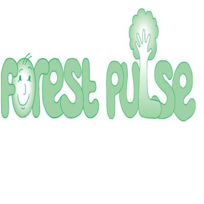 Forest Pulse