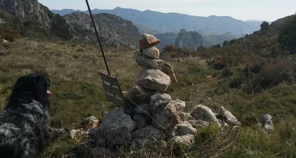 Verslag Bergstappers Plus 19 maart