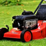 Summer Lawn Maintenance for Albany's Weather