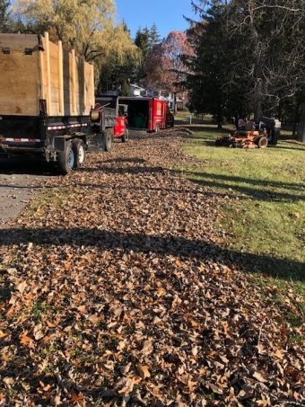 fall cleanup services in albany, schenectady and capital region