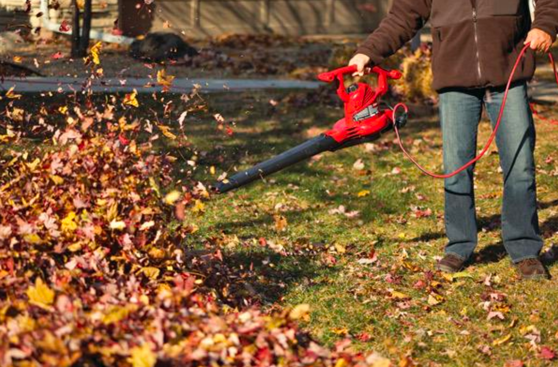 fall cleanup for leaves and lawn