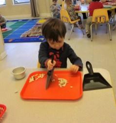 Science Fair at Northwest Montessori House of Children