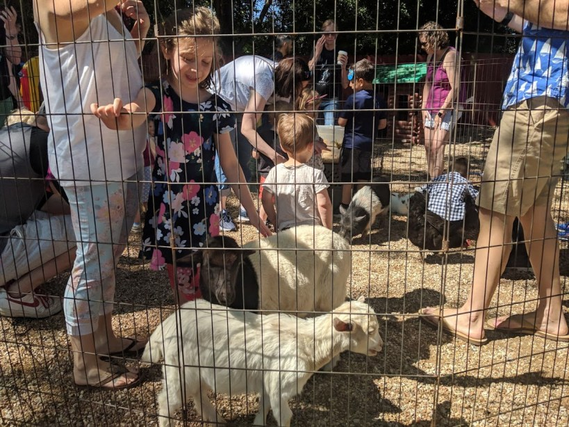 Northwest Montessori 35th Anniversary Spring Festival
