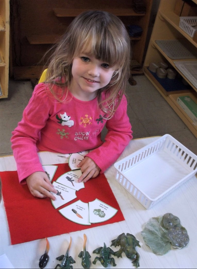 Northwest Montessori, Northwest Montessori–The Best Montessori School in Austin