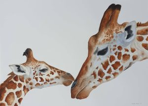 Aquarel of Giraffe pair mother and calf, endearing pose