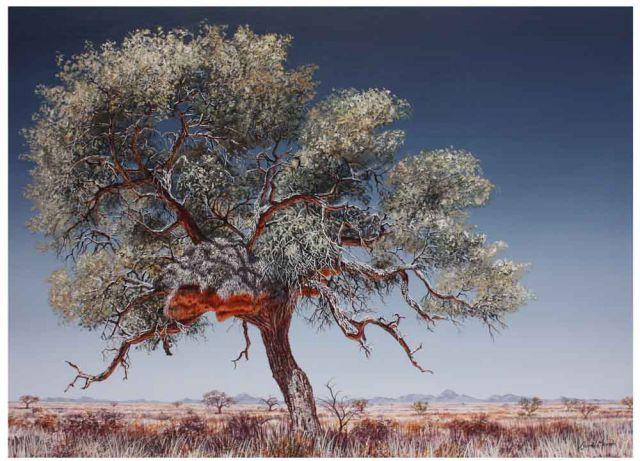 DM_Grunau Tree