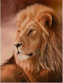 DM_Lion of Judah
