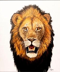 Leeuw frontaal olieverf schilderij door Zuidafrikaanse kunstenaar Nic van Rensburg