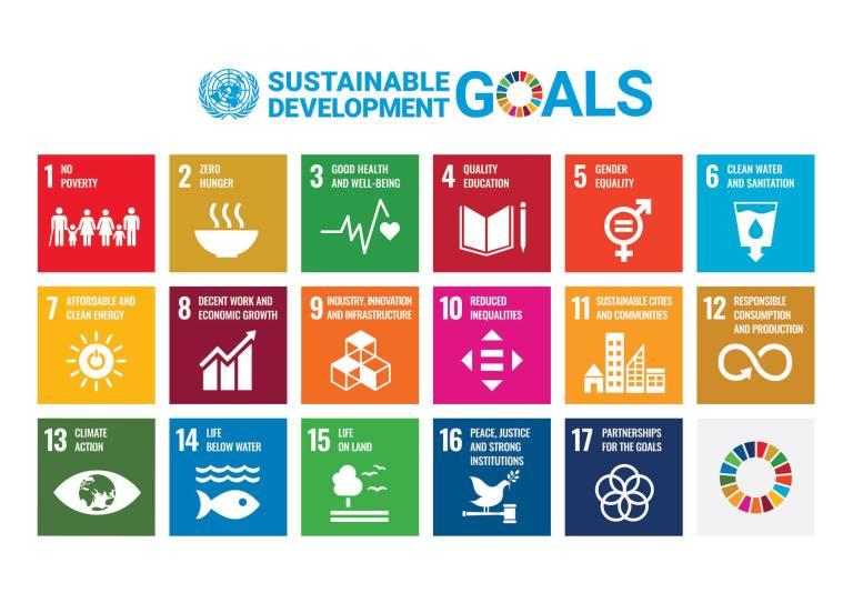 17 SDG doelen voor 2030