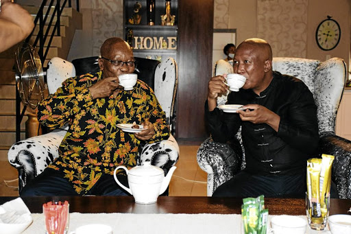 The purpose of the Tea meeting between Zuma and Malema was revealed