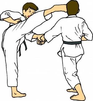 https://i0.wp.com/nwasianweekly.com/wp-content/uploads/2011/30_41/sports_taekwondo.jpg?resize=300%2C327