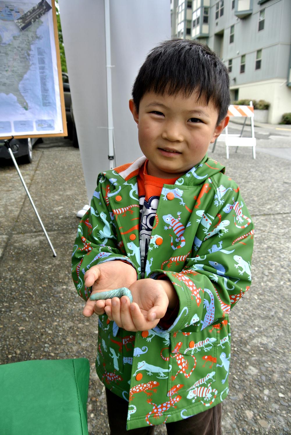 Boy holding a tobacco hornworm caterpillar.